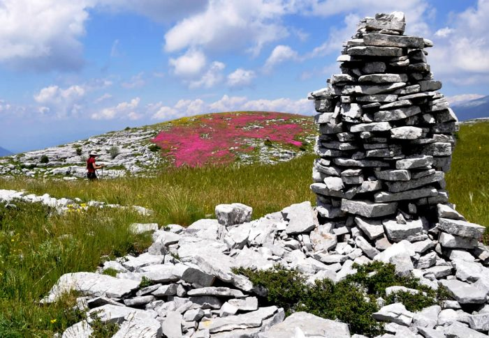 The cultural landscapes of dry-stone structures in the Zagori Eco Museum