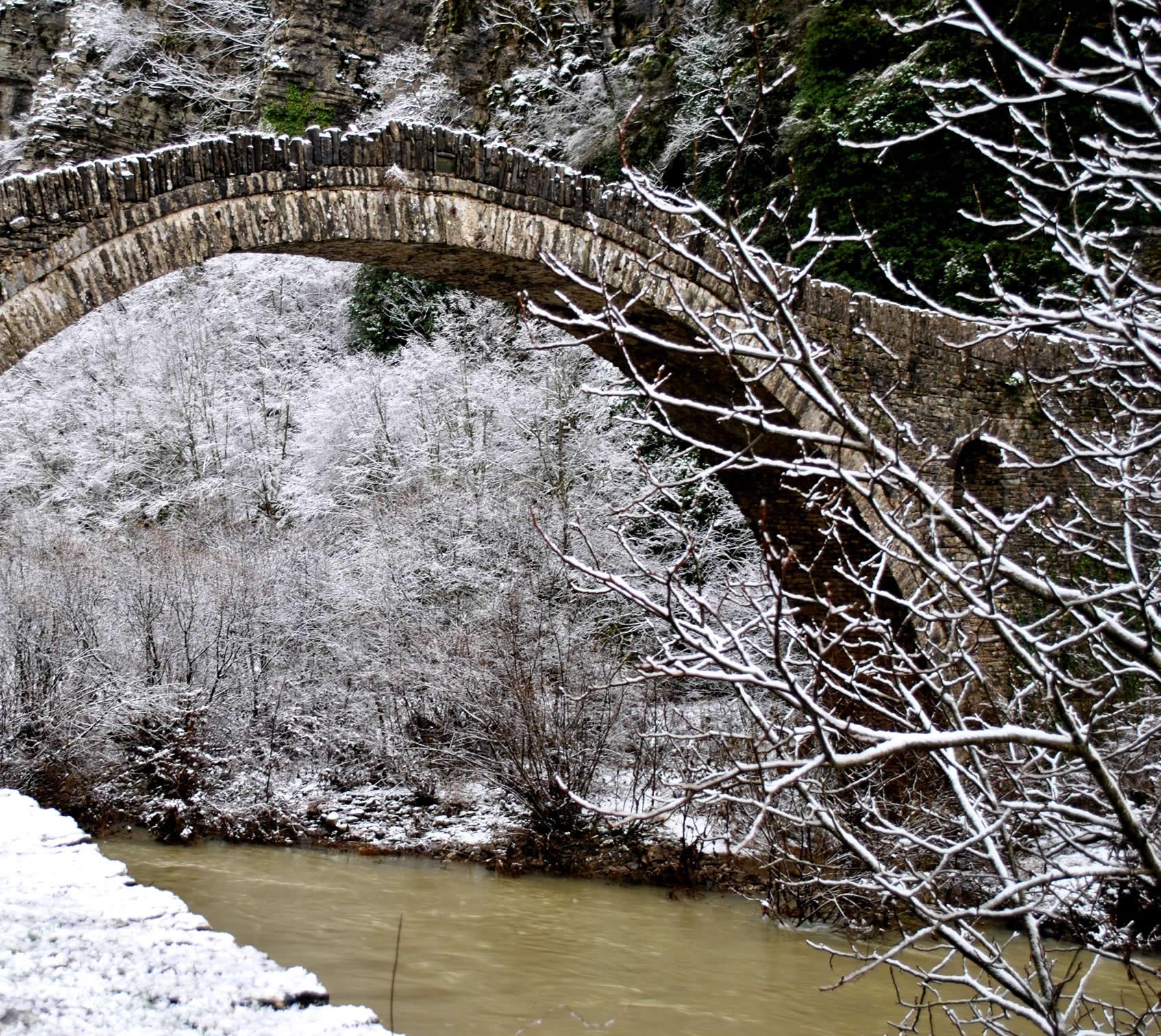 Kokkoris bridge | The biota of an Eco Museum
